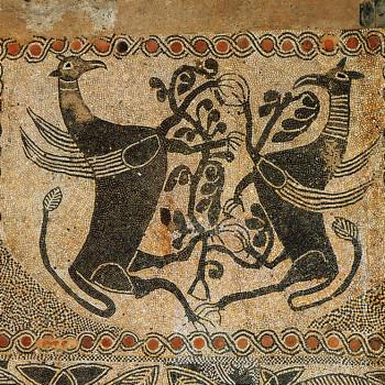 Anteprima mosaico-grifoni-rid-long.jpg