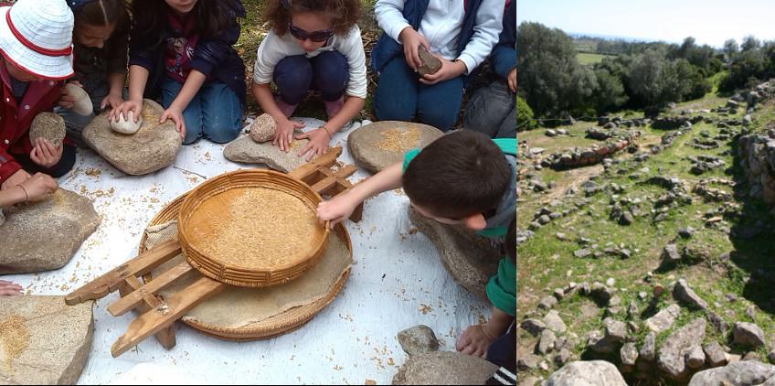 Verso il pane: la straordinaria avventura di un semino
